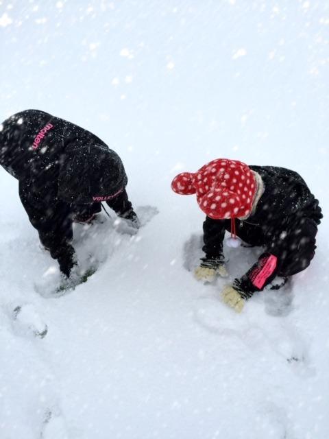 【大雪注意】不要不急の外出は控えましょう。つづきはこちらから⇒